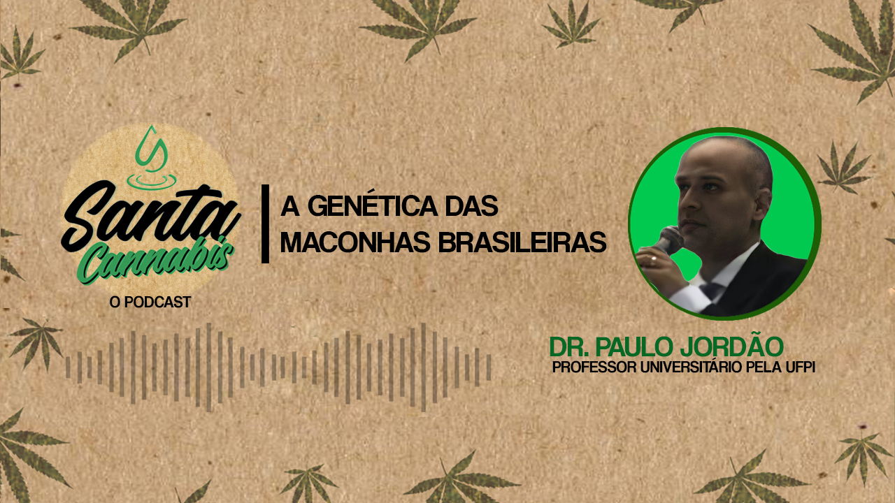 A genética das maconhas brasileiras, com Dr. Paulo Jordão
