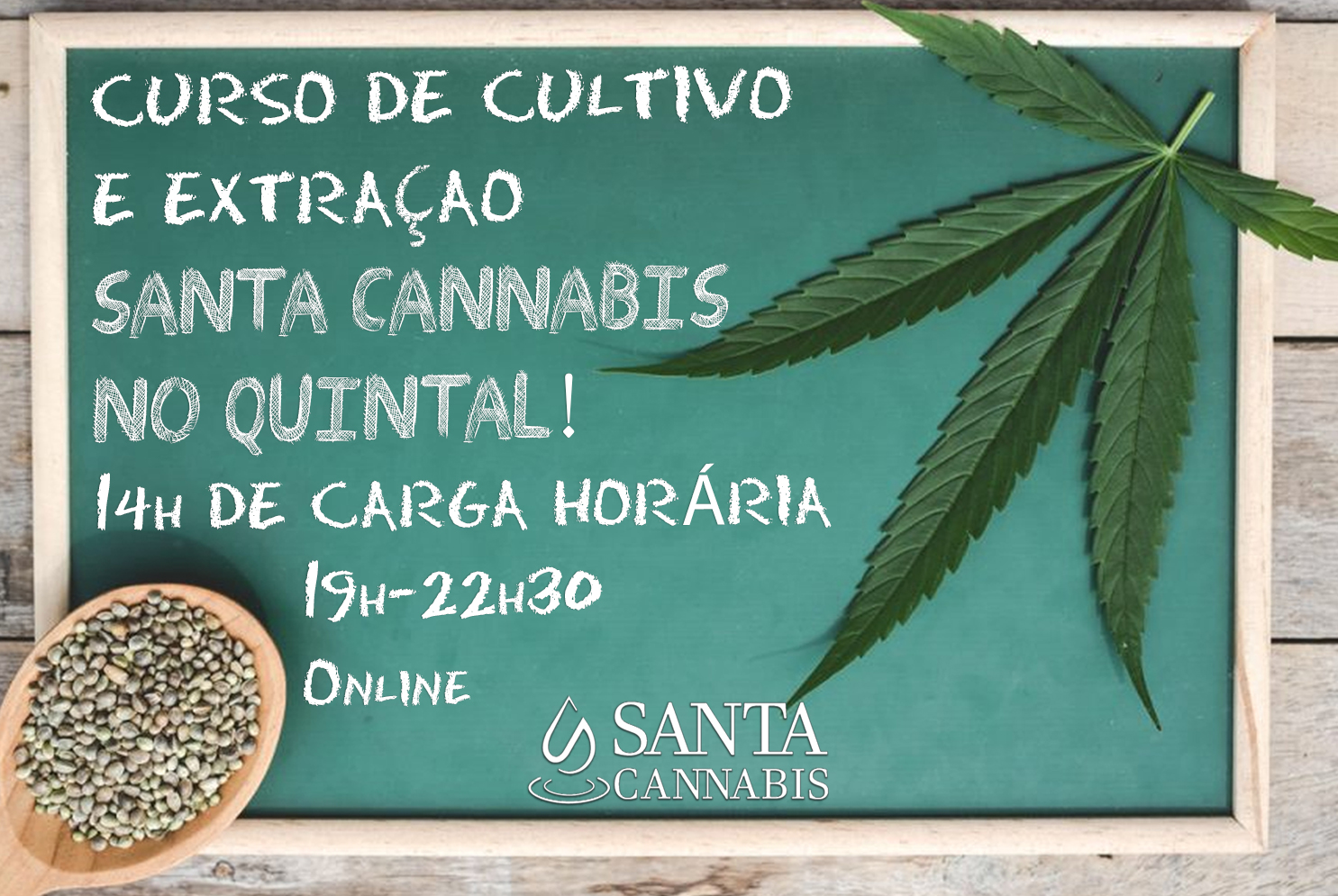 Curso de Cultivo e Extração Santa Cannabis no Quintal – INSCREVA-SE