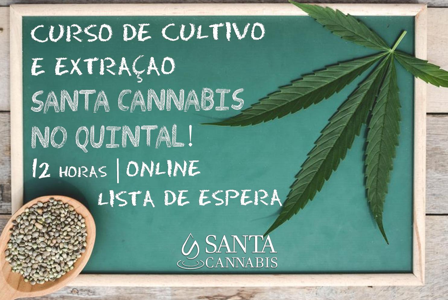 Curso de Cultivo e Extração Santa Cannabis no Quintal